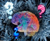 cerveau cognitif et physiologique
